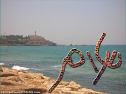 Artistic rendering of the Hebrew and Arabic words for 'peace', shālōm and salām, respectively, in a style demonstrating their graphic resemblance, against the backdrop of the Old City of Yāfō (Jaffa).